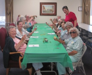 Social Activities for Seniors Albany, NY